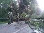 Einsatz Sturmschaden Juli 2012