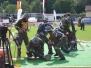 Landeswettbewerb 2011